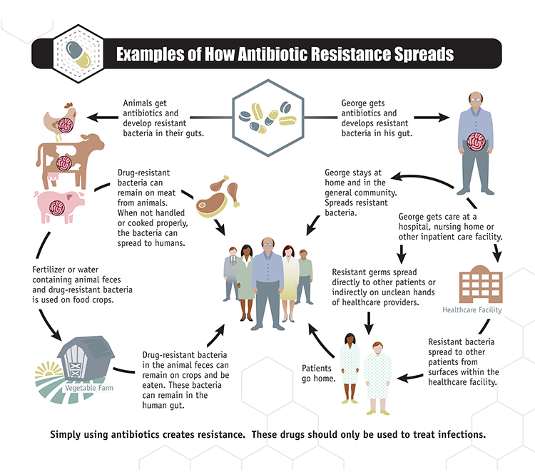 antibiotic_resistance_spreads